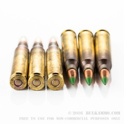 30 Rounds of 5.56x45 Ammo by Federal American Eagle - 62gr FMJBT Fresh Fire Can