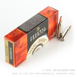 20 Rounds of .243 Win Ammo by Federal GameKing - 100gr SPBT