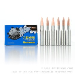 20 Rounds of 7.62x54r Ammo by Silver Bear - 174gr FMJ