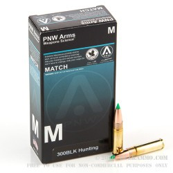 400 Rounds of .300 AAC Blackout Ammo by PNW Arms - 125gr Nosler Ballistic Tip BT