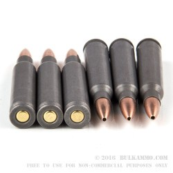 500  Rounds of .223 Ammo by Wolf WPA - 55gr HP