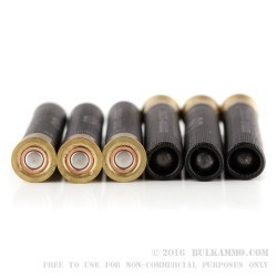 """25 Rounds of 3"""" .410 Ammo by Sellier & Bellot - 15 BB Shot - 2 000 Buck Shot"""