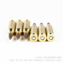 20 Rounds of .243 Win Ammo by Federal - 95gr Fusion