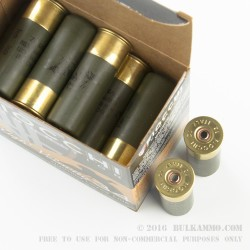 25 Rounds of 12ga Ammo by Fiocchi -  #9 Shot