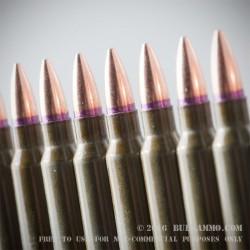 20 Rounds of .223 Ammo by Golden Tiger - 56gr FMJBT
