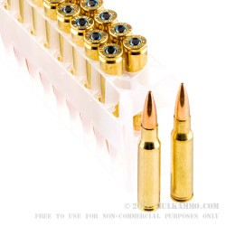 20 Rounds of 7.62x51mm Ammo by Federal - 168gr OTM