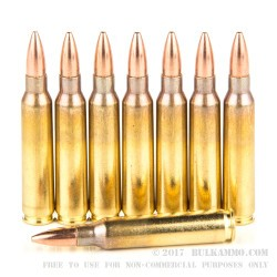 1000 Rounds of 5.56x45mm by Prvi Partizan Battle Pack - 55gr FMJBT