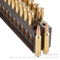 20 Rounds of 5.56x45 Ammo by Barnes Range AR - 52gr OTM