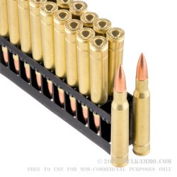 20 Rounds of 30-06 Springfield Ammo by Golden Bear - 145gr FMJ