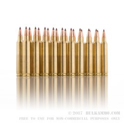 20 Rounds of .204 Ruger Ammo by Federal - 32 gr Nosler Ballistic Tip