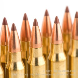 20 Rounds of .223 Ammo by Hornady - 35 gr Non-Toxic Polymer Tipped