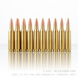 20 Rounds of .243 Win Ammo by PMC - 75gr HPBT
