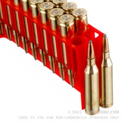 20 Rounds of .243 Win Ammo by Fiocchi - 100 gr PSP