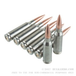 750 Rounds of 5.45x39mm Ammo by Silver Bear - 60gr FMJ
