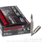 20 Rounds of .243 Win Ammo by Winchester Ballistic SilverTip - 95gr Polymer Tipped